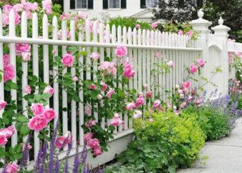 Gạch sân vườn biệt thự châu Âu mẫu nào đẹp nhất?
