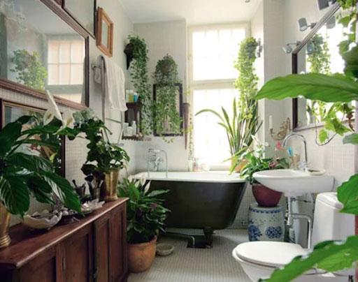 Điểm danh những phụ kiện trang trí nhà vệ sinh không thể bỏ qua 1